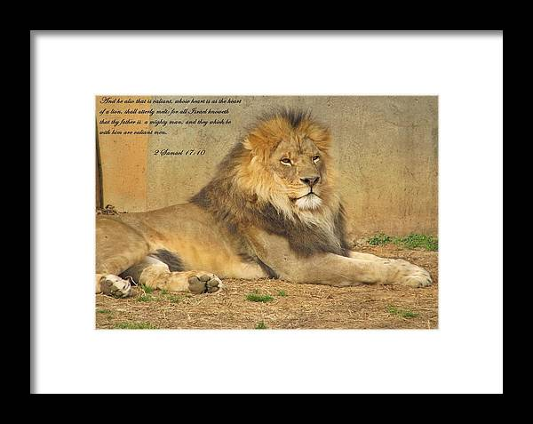 Lion Framed Print featuring the photograph Inspirations 2 by Sara Raber