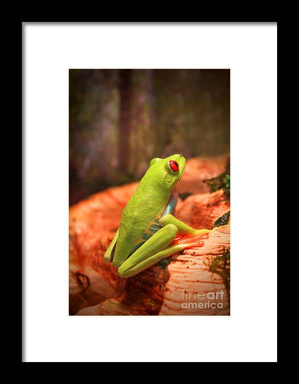 Hope Framed Print featuring the photograph Inspirations For Tomorrow by Cathy Beharriell
