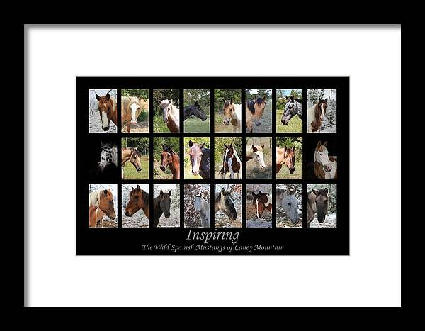 Horse Framed Print featuring the photograph Inspiring by Designs And Images