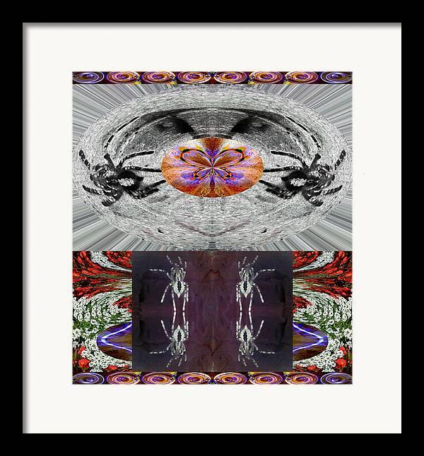 Spider Framed Print featuring the photograph Inspiring Trust Spider - Spirit 2013 by James Warren