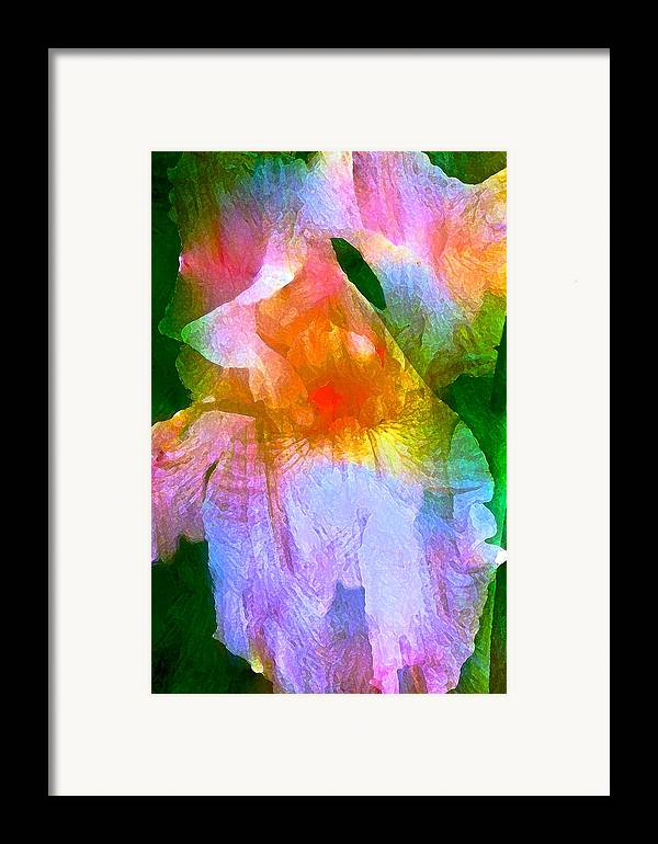 Floral Framed Print featuring the photograph Iris 53 by Pamela Cooper