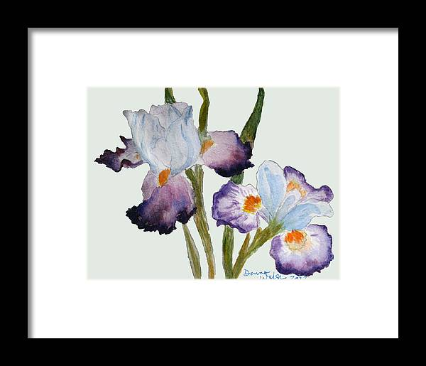 Iris Framed Print featuring the painting Iris by Donna Walsh