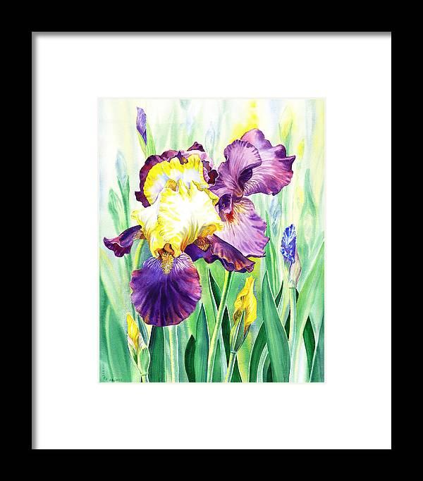 Iris Framed Print featuring the painting Iris Flowers Garden by Irina Sztukowski