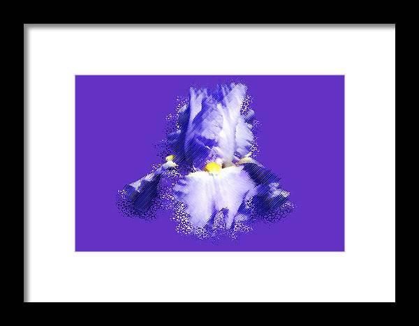 Iris Framed Print featuring the digital art Iris Passementerie by Susan Elizabeth Dalton