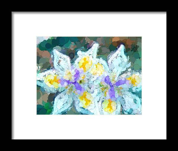 Iris Framed Print featuring the photograph Irises Abstracted by Alice Gipson