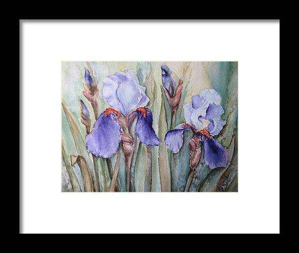 Watercolor Framed Print featuring the painting Irises by Olga
