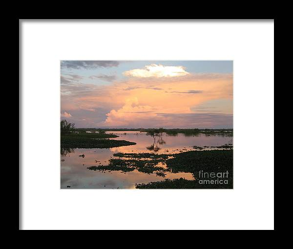 Amazon Framed Print featuring the photograph Itaya River by Gart Van Gennip