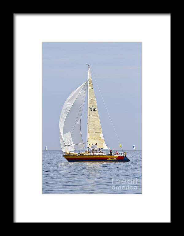 Sailing The Great Lakes Framed Print featuring the photograph It's A Zoo by Michael Petrick