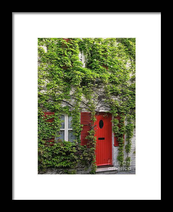Ivy Framed Print featuring the photograph Ivy Cottage by Ann Horn