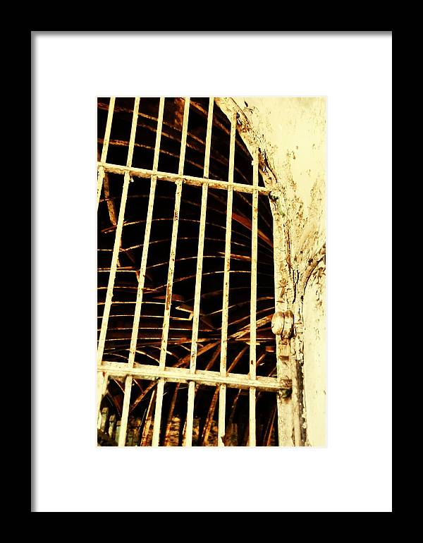 Eastern Framed Print featuring the photograph Jail Bird by JAMART Photography