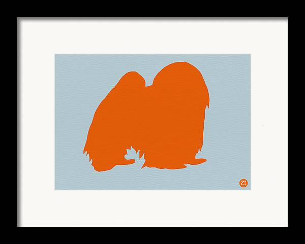 Japanese Chin Framed Print featuring the photograph Japanese Chin Orange by Naxart Studio