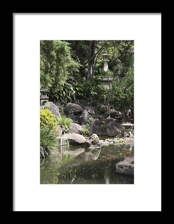 Green Framed Print featuring the photograph Japanese Maui Garden by Pamela Smith