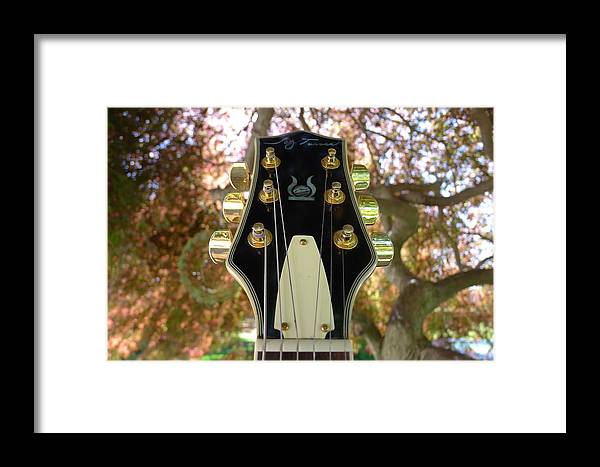 Jay Framed Print featuring the photograph Jay Turser Head Stock by Richard Reeve