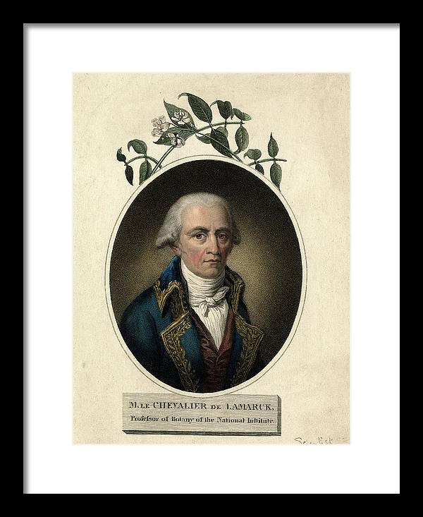 Jean-baptiste Lamarck by Natural History Museum, London/science Photo Library