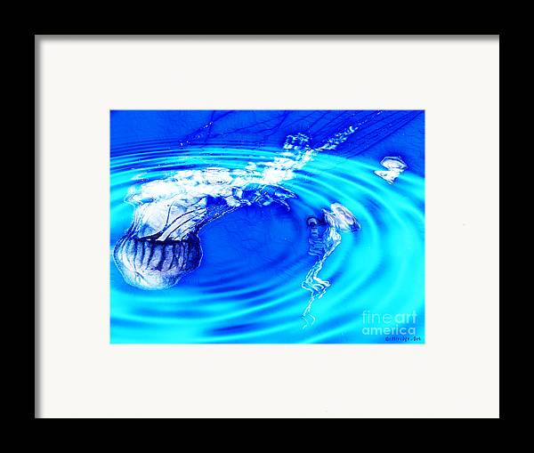 Jellyfish Pool Framed Print featuring the photograph Jellyfish Pool by Methune Hively