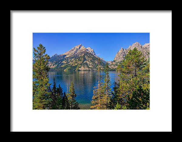 Jenny Lake Framed Print featuring the photograph Jenny Lake Overlook by Greg Norrell