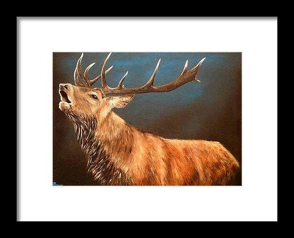 Stag Framed Print featuring the painting 'jock' by Ben Braithwaite