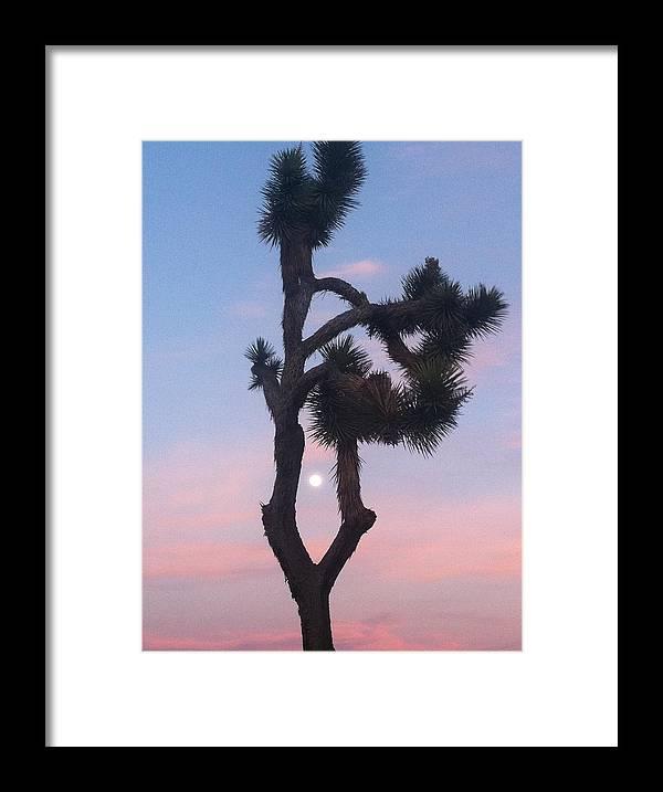 Joshua Tree Framed Print featuring the photograph Joshua Tree Full Moon by Dashama Gordon