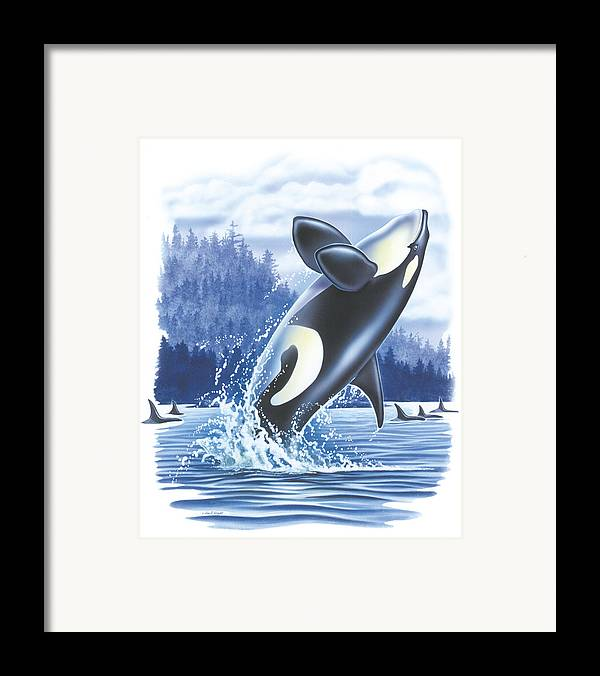 Jon Q Wright Framed Print featuring the painting Jumping Orca by JQ Licensing