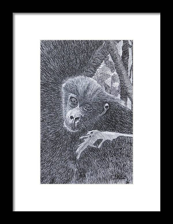 Nature Framed Print featuring the drawing Jungle Baby by Wade Clark