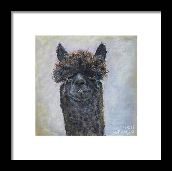 Alpacas Framed Print featuring the painting Just Call Me Commander Drew by Elizabeth Ellis