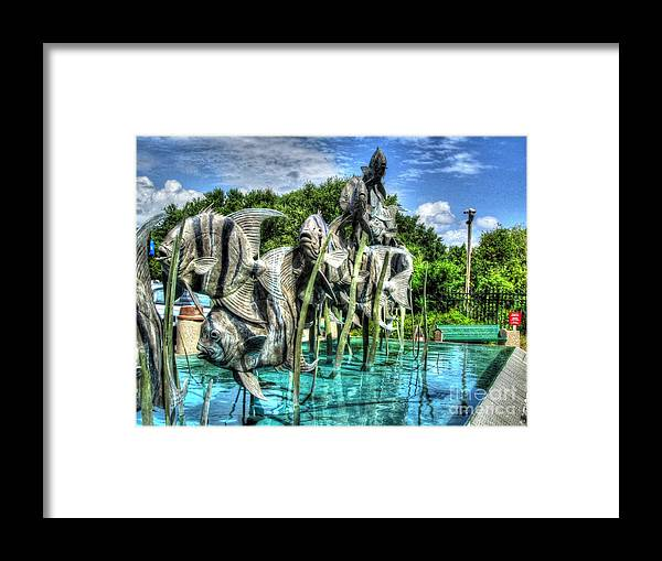 Swim Framed Print featuring the photograph Just Keep Swimming by Jaclyn Hughes Fine Art
