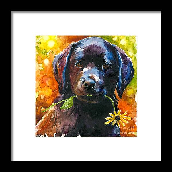 Black Lab Puppy Framed Print featuring the painting Just Picked by Molly Poole