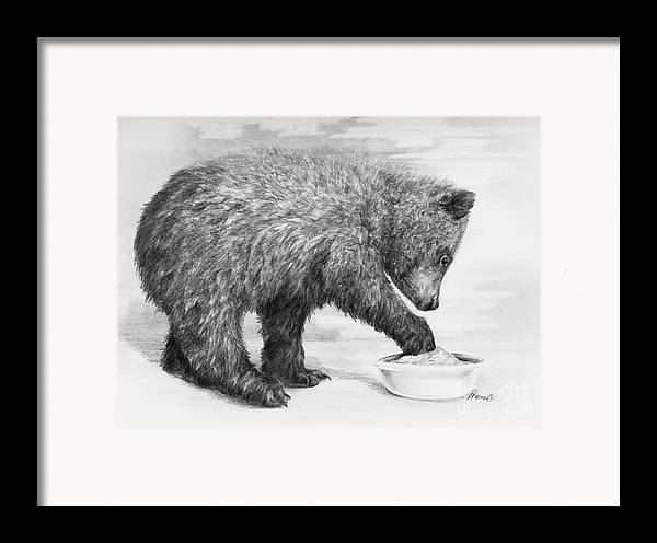 Bear Framed Print featuring the drawing Just Right by Meagan Visser