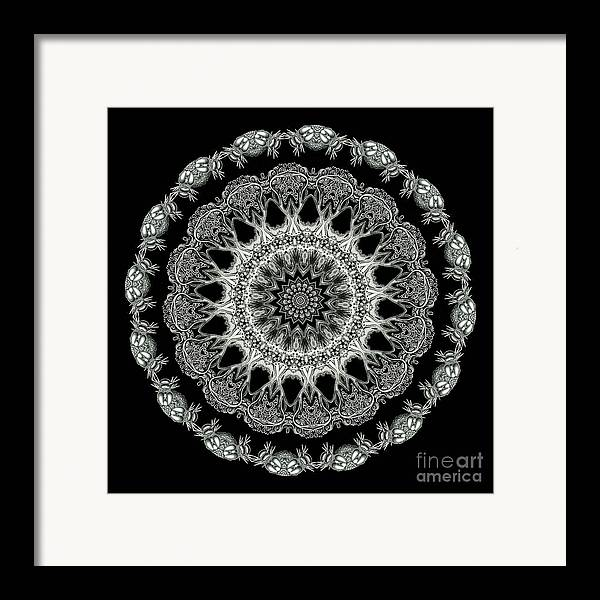 Ernst Haeckel Framed Print featuring the photograph Kaleidoscope Ernst Haeckl Sea Life Series Black And White Set 2 by Amy Cicconi