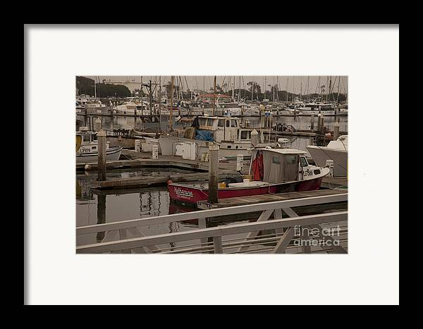 Katherine Framed Print featuring the photograph Katherine by Amanda Barcon