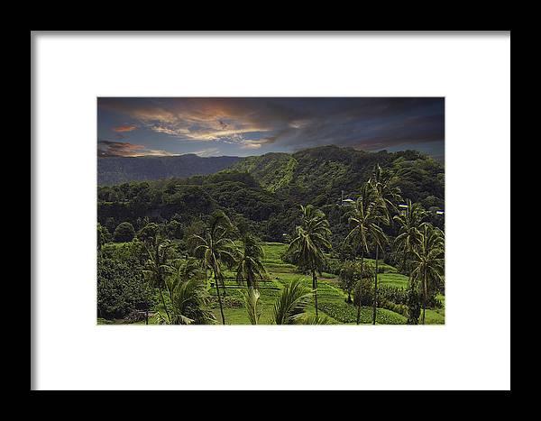 Keanae Maui Hawaii Sunrise Tropical Palmtrees Lush Jungle Framed Print featuring the photograph Keanae Morning by James Roemmling