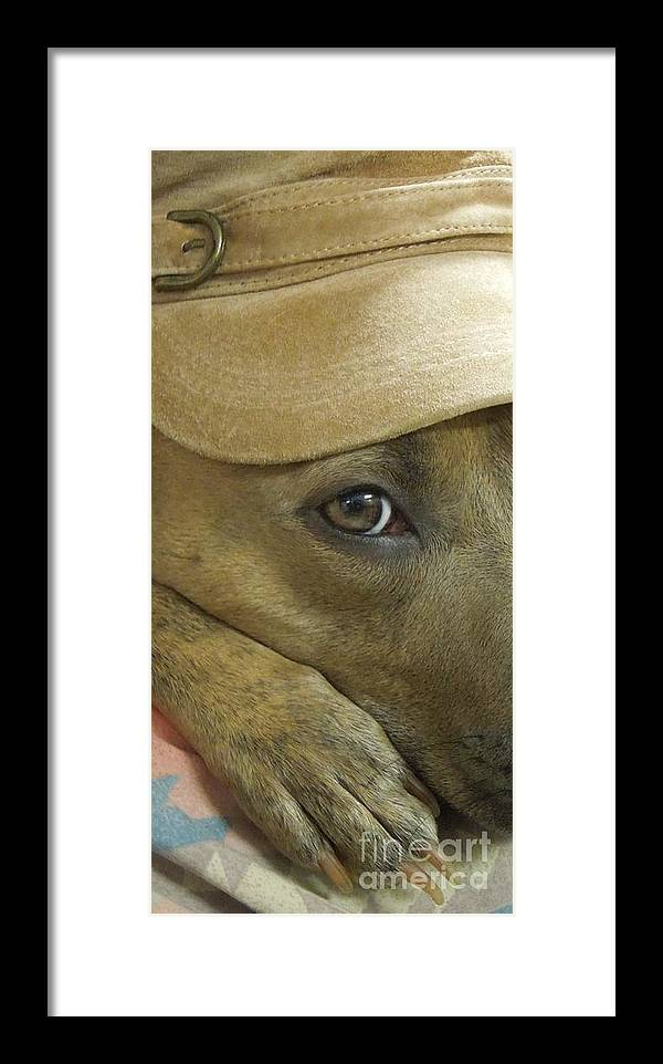 Dog Framed Print featuring the photograph Keep One Eye Open by Renee Trenholm