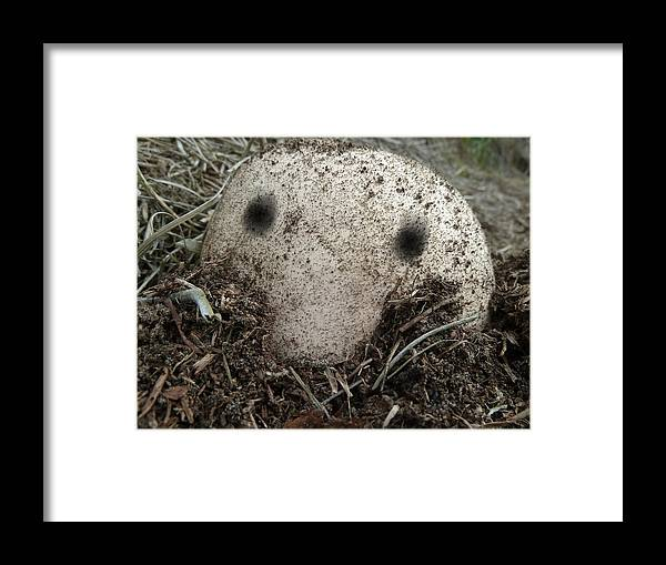 Kilroy Was Here Framed Print featuring the photograph Kilroy Was Here by Steve Taylor
