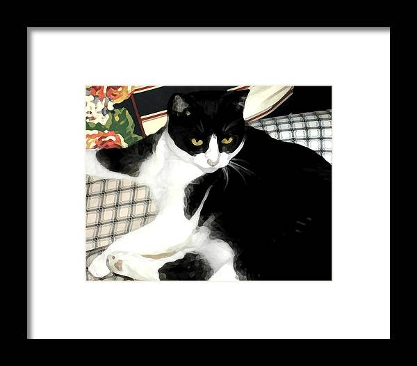 Black And White Framed Print featuring the photograph Kitty On His Perch by Jeanne A Martin
