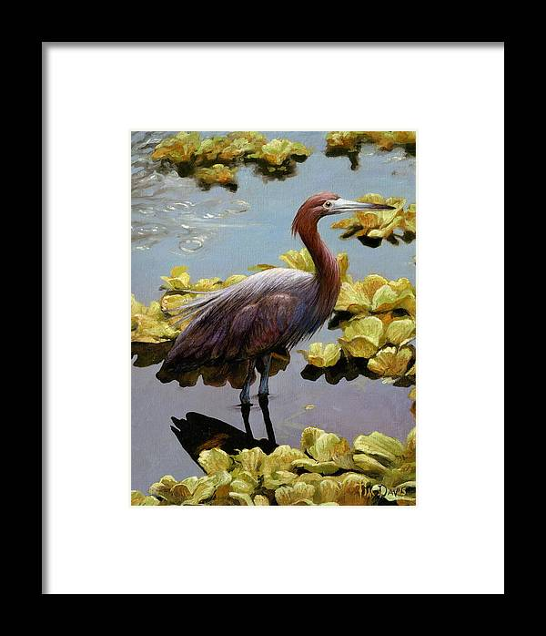 Tricolored Framed Print featuring the painting Knee Deep by Tim Davis