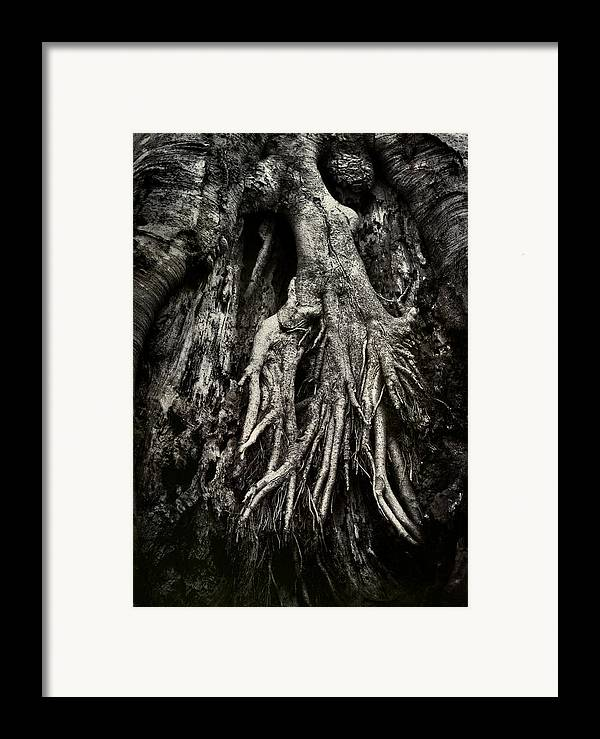 Tree Framed Print featuring the photograph Kneeling At The Feet Of The Green Man by Rebecca Sherman