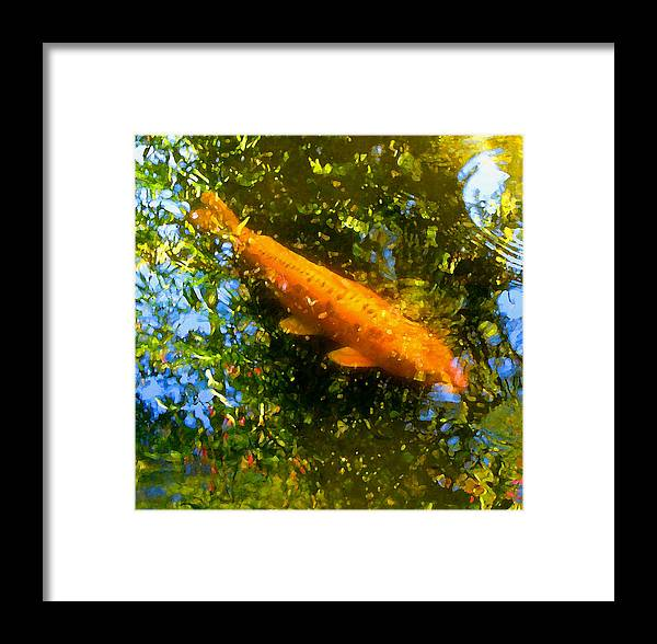 Animal Framed Print featuring the painting Koi Fish 1 by Amy Vangsgard
