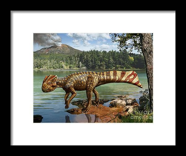 Dinosaur Digital Art Framed Print featuring the digital art Koreaceratops hwaseongensis by Julius Csotonyi