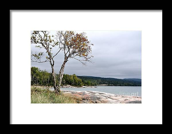 Lake Superior Autumn Framed Print featuring the photograph Lake Superior Autumn by Daryl Macintyre