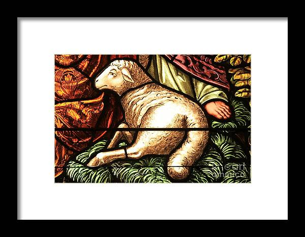 Religious Lamb Framed Print featuring the photograph Lamb Of God by Adam Jewell