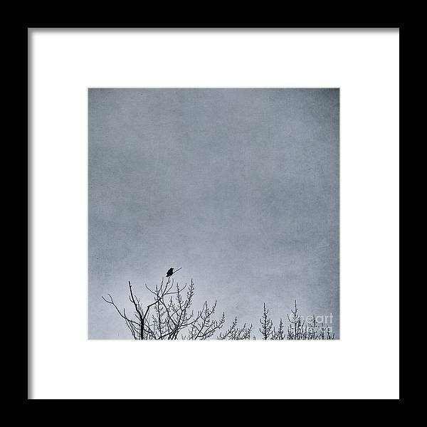 Nature Framed Print featuring the photograph Land Shapes 8 by Priska Wettstein