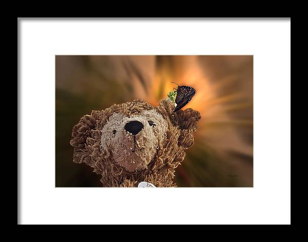 Fantasy Framed Print featuring the photograph Landing Pad Bear by Thomas Woolworth