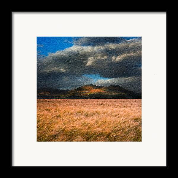 Landscape Framed Print featuring the photograph Landscape Of Windy Wheat Field In Front Of Mountain Range With D by Matthew Gibson