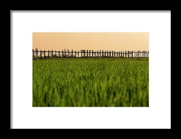 Built Structure Framed Print featuring the photograph Large Rice Paddy Below U Bein Bridge by Merten Snijders