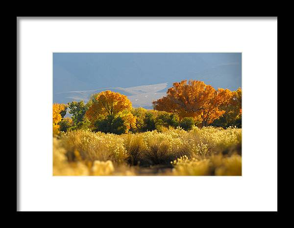 Bishop Framed Print featuring the photograph Last Light In Bishop by Frank Lee Hawkins