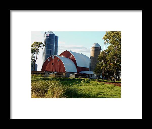 Summer Framed Print featuring the photograph Late Afternoon by Wild Thing