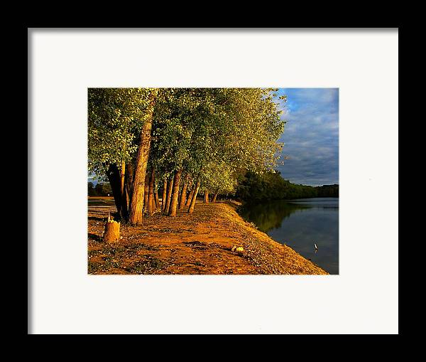 Evening Framed Print featuring the photograph Late Evening On White River by Julie Dant