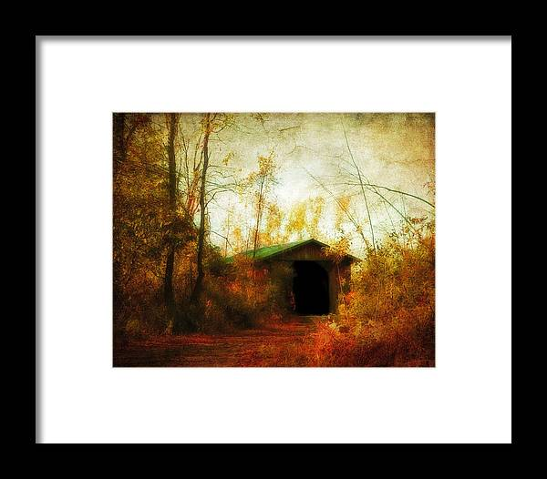 Fall Framed Print featuring the photograph Late October by Gothicrow Images