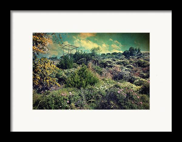 Mountain Framed Print featuring the photograph Le Printemps by Taylan Apukovska