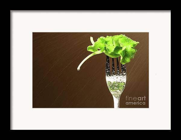 White Framed Print featuring the photograph Leaf Of Lettuce On A Fork by Sandra Cunningham